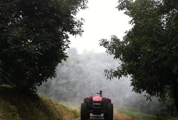 Pulverisateurs-Arbres fruitiers-0-Uruapan / Fp 550lt 1000 - Lt 1500 - Lt 2000